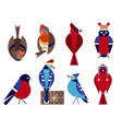 christmas birds in funny hats icons set vector image vector image