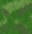 Dense tropical forest vector image