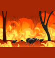 kiwi silhouettes running from forest fires in vector image