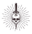 knife in skull tattoo print with rays vector image