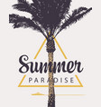 summer banner with palm tree and ship vector image vector image
