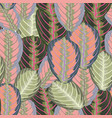 abstract vintage composition colorful tropical vector image