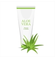 Aloe vera cream vector image vector image