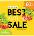 autumn sale and typography flyer with lettering vector image
