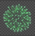 beautiful green firework bright salute isolated vector image vector image