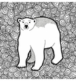 Black and white with polar bear for vector image vector image