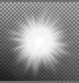 glowing light bursts with flare on transparent vector image
