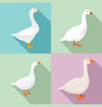 goose icons set flat style vector image