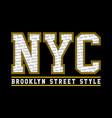 nyc brooklyn street style vector image vector image
