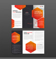 pharmaceutical brochure tri fold template vector image