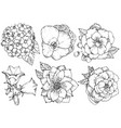 beautiful floral set various flowers black and vector image vector image