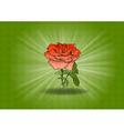 rose on the green background vector image