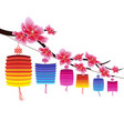 sakura flowers background cherry blossom and vector image