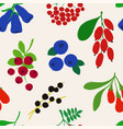 seamless pattern with colorful berries vector image