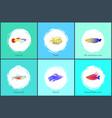 boxfish and neon tetra fish vector image vector image