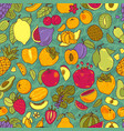 fruits hand drawn set vector image