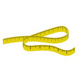 measure tape icon vector image