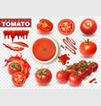 realistic tomato transparent set vector image vector image