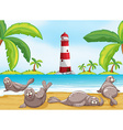 Seals relaxing on the beach vector image vector image