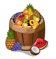 barrel with mouth-watering tropical fruits vector image vector image