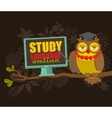 Owl on the tree with computer promoting on-line