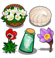 set of flowers marshmallows and bottle of wind vector image vector image