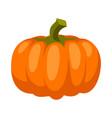 cartoon ripe pumpkin vector image vector image