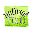 natural food vector image