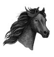 Portrait of beautiful purebred raven horse vector image vector image