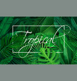 poster with tropical leaves vector image vector image