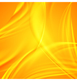 Vibrant wavy abstraction vector image vector image