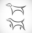 Vizsla dog standing vector image vector image