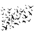 flying birds flock isolated vector image vector image