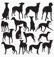 grey hound dog silhouettes vector image