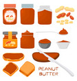 on theme big colored set different types peanut vector image