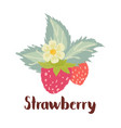 strawberry forest berry vector image