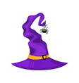 halloween witch hat and spider halloween icon vector image