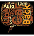 Back Up Auto Sensor text background wordcloud vector image