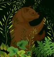 Bear design vector image vector image