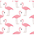 flamingo seamless pattern vector image