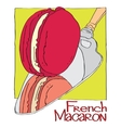 French Macaron vector image