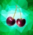 Purple Cherry Polygon vector image vector image