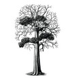 tree hand drawing vintage engraving clip art vector image