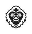 Gorilla head logo for sport club or team Animal vector image