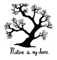 hand drawn trees are hand drawing a doodle style vector image