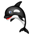 Orca Cartoon vector image