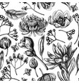 seamless pattern with black and white viburnum vector image vector image