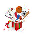 sports equipment gift vector image vector image