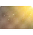 sun light flare background effect sunlight ray vector image vector image