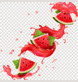 watermelon juice splashes vector image vector image